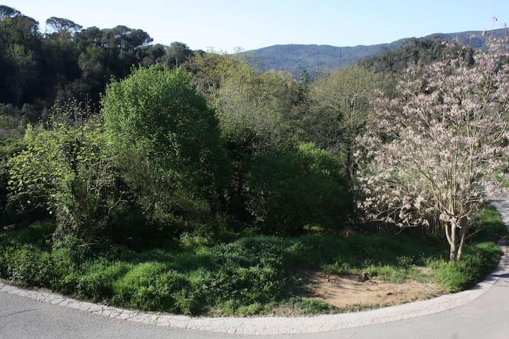 Masía en Parque Natural Montnegre i Corredor - Vallgorguina - Hus