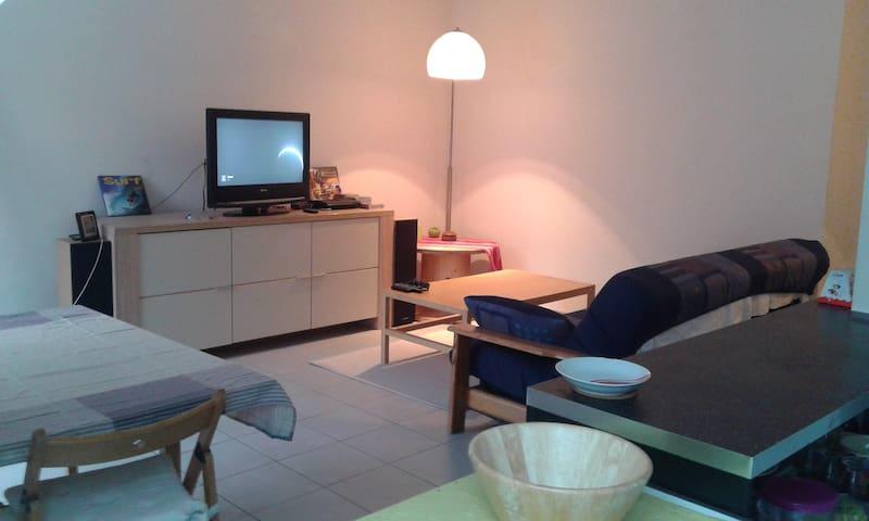 Appartement 60m² avec terrasse centre Alsace - Erstein - Leilighet