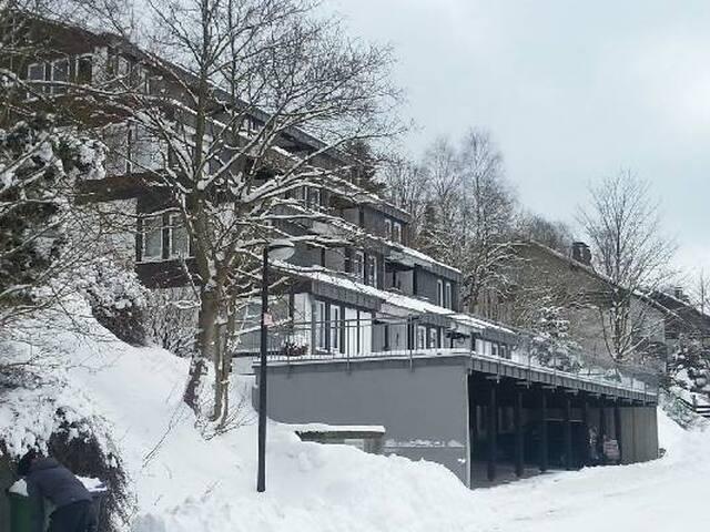 Mooi appartement in het betoverende Sauerand - Winterberg - Leilighet