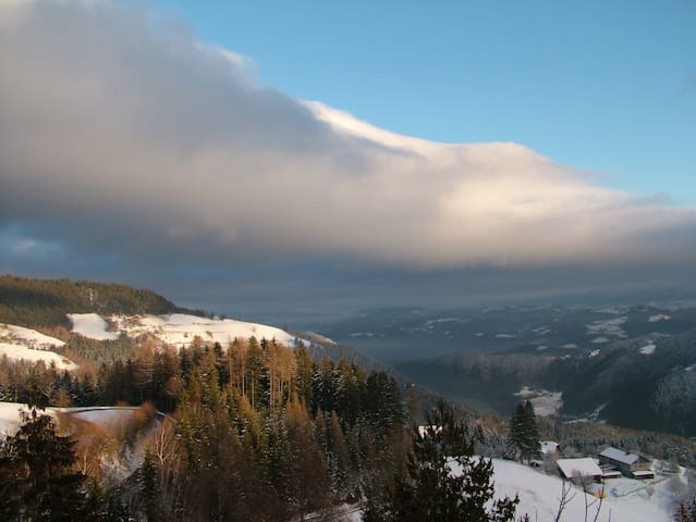 Stunning views from house on the hill - Ojstrica - Huis