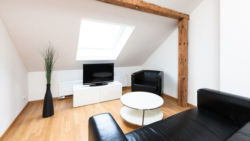 Swiss Star Marc Aurel - 2 bedroom apartment - Zúrich - Departamento