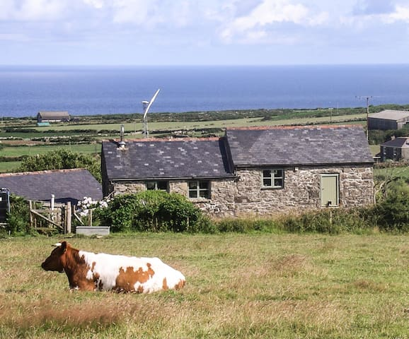 Rustic farm retreat with sea views - Morvah - Bed & Breakfast