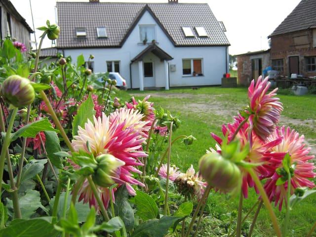 odpoczynek we wsi nad Bałtykiem - Kołobrzeg County - Andre