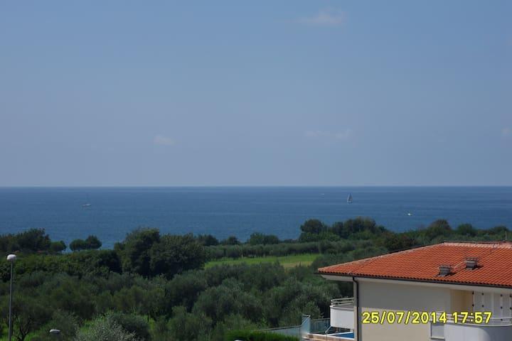 Nice place with pool - Zambrattia