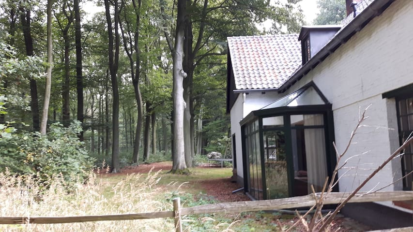 Cottage in the Woods - Putte - Kulübe