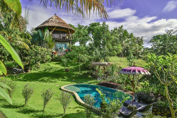 BALIAN TREEHOUSE w beautiful pool - Balian Beach, Bali - 단독주택