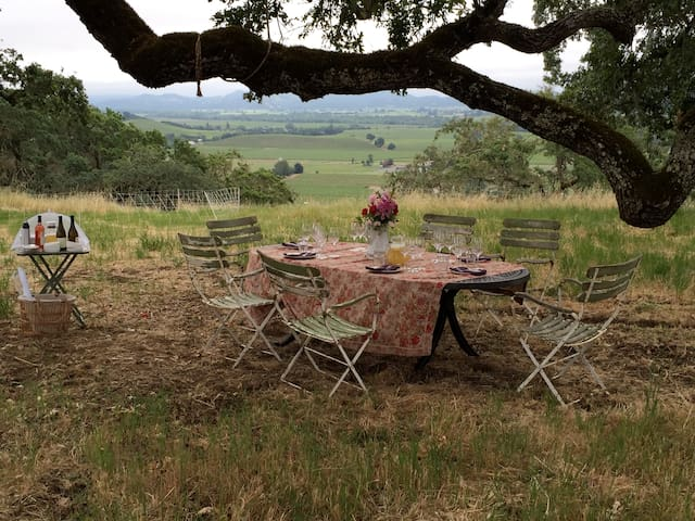 Wine Country Sheep Pasture Venue - Geyserville