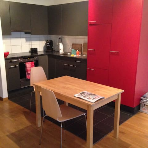 Nice town apartment in kleinbasel near Messe Basel - Bazel - Appartement