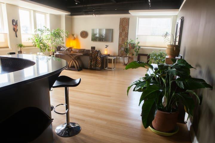 Luxury Loft Apartment on Bathhouse Row - Hot Springs