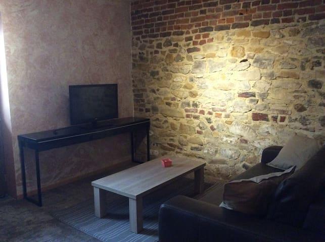 studio proche du parc Pairi Daiza - Brugelette - Appartement en résidence