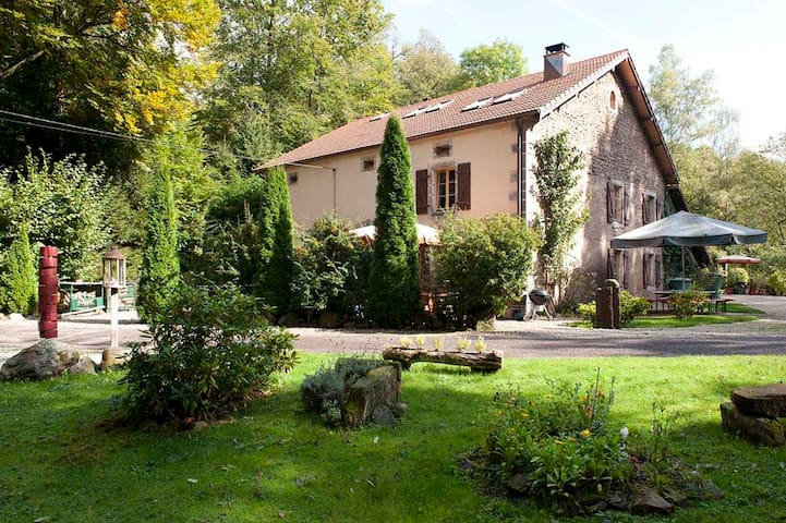 Relax and enjoy nature in the middle of the forest - Sainte-Marie-en-Chanois