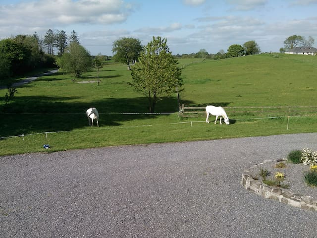 Cosy Countryside Home 1hr Dublin. - Mullingar - Appartement