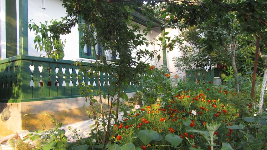 Traditional house,authentic,natural - Enisala - Bed & Breakfast