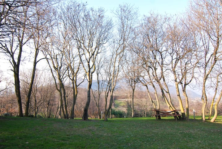 villa con piscina, lago d'iseo, - Torbiato - Villa