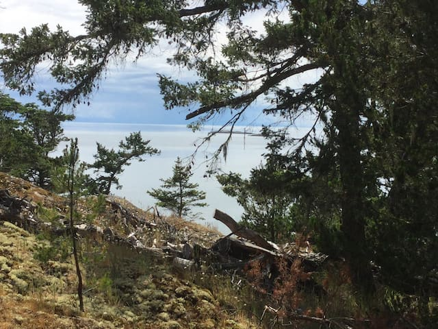 Salish view Yurt - Lopez Island