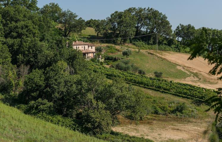 Agriturismo Bacchiocchi, rooms - Orciano, Montebello di Orciano - Haus