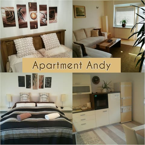 Big apartment with 4 rooms/6 person - Medvode - Appartement