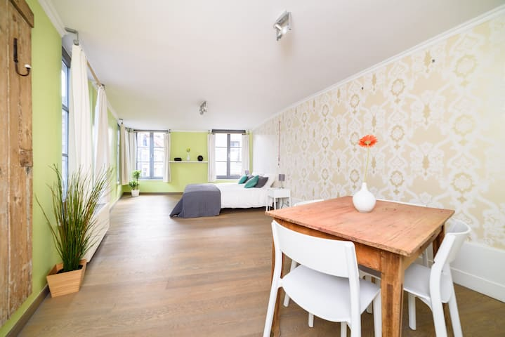Sunny apartment in townhouse next to the park - Gent - Apartemen