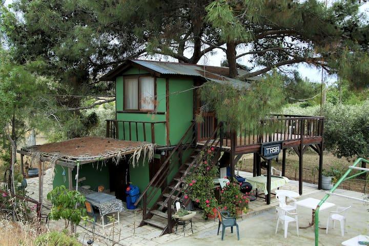 Tasias Tree House - ลาร์นากา