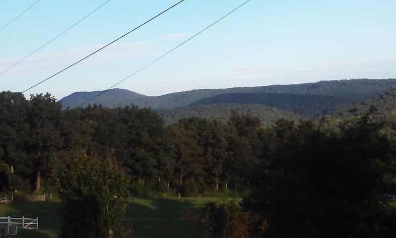 Peak View - solitude with all the conveniences - Pulaski - Casa