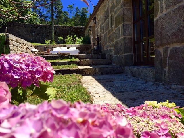 Splendid apartment in a Vineyard luxury - Sabariz