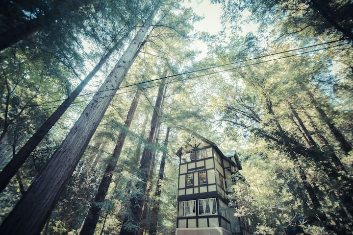 Cozy 1-BD Redwood Treehouse Retreat - Mill Valley - Huis