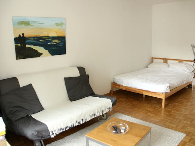 Apartment Downtown - Fribourg - Appartement