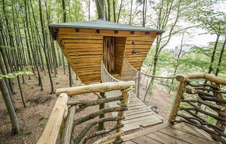 Stamm Baumhaus - Eins sein mit dem Baum. - Witzenhausen - Rumah Pohon
