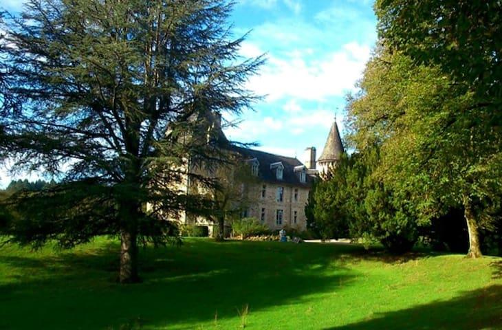 The Historic Chateau de Beaufort - La Roche-Canillac - Castillo