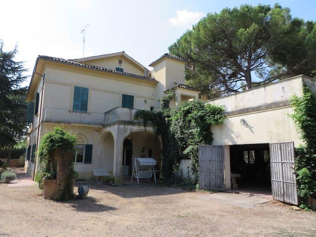 Villa Nel Verde attico - Casalbordino-miracoli - Departamento