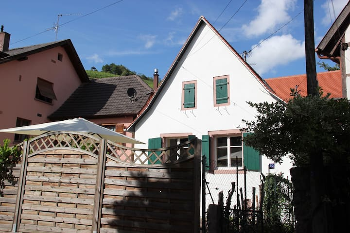 Picturesque house close to Colmar and Strasbourg - Andlau - Hus