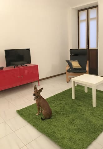 ViCinidicasa 1 - Vercelli - Apartament