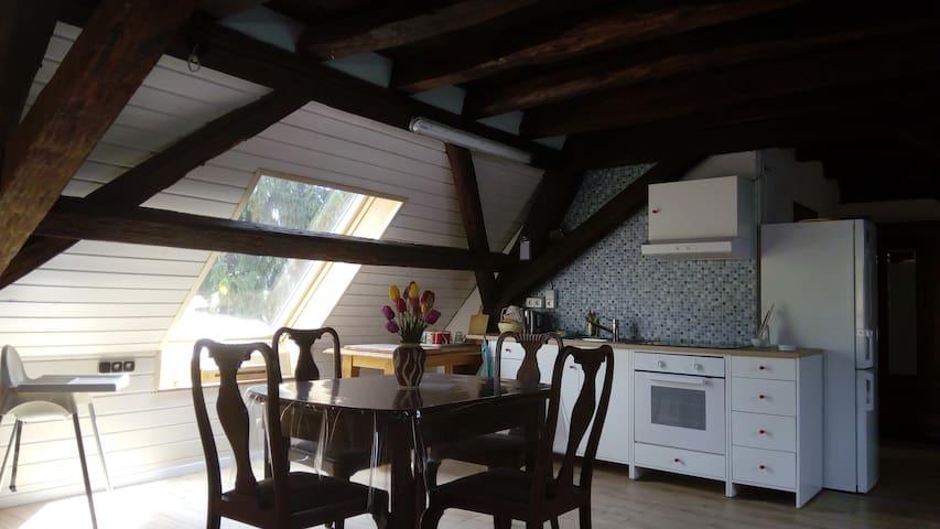 Tolle Dachgeschosswohnung in alter Mühle - Offenbach an der Queich - Appartement
