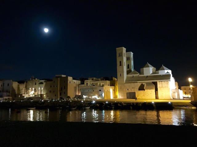 Appartamento in palazzo Muscati centro storico - Molfetta - Apartemen