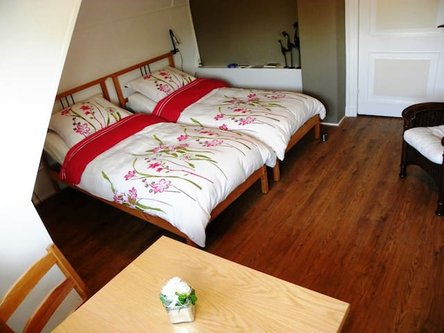 -Kamer Nijenhuis- Bed en Breakfast Reggedal - Diepenheim - Bed & Breakfast