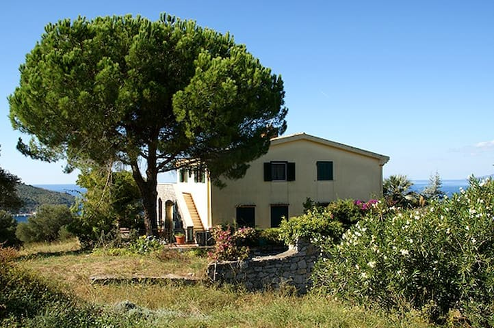 MARITTIME PINE'S HOUSE: SEE OFFERTS IN DESCRIPTION - Palinuro - Leilighet