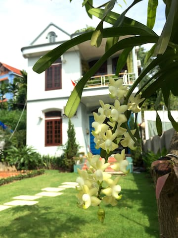 Cozy Mango Room in Gingerhomestay - tp. Hạ Long - Huis