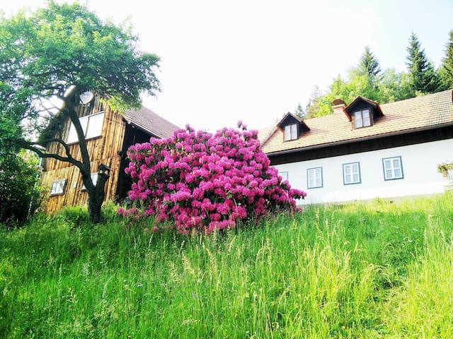 Ferienhaus mit privatem Indoorpool - Miesenbach bei Birkfeld - Huis