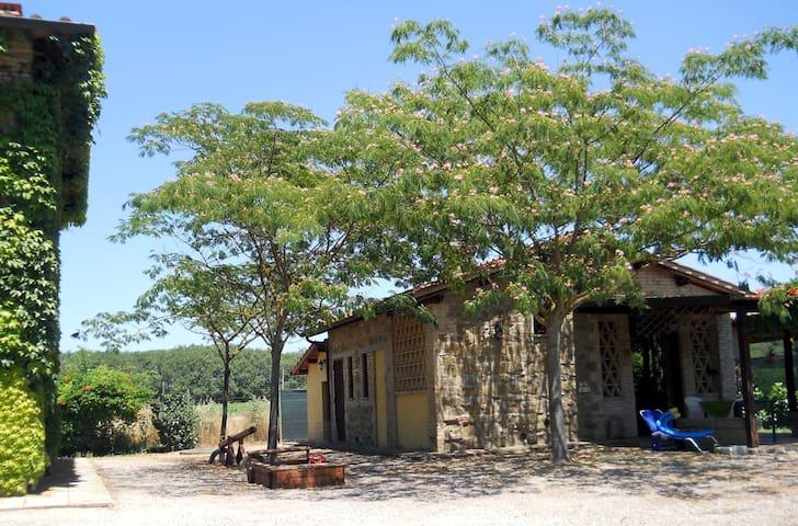 Nido House with pool. FREE WIFI - Torgiano - Huis