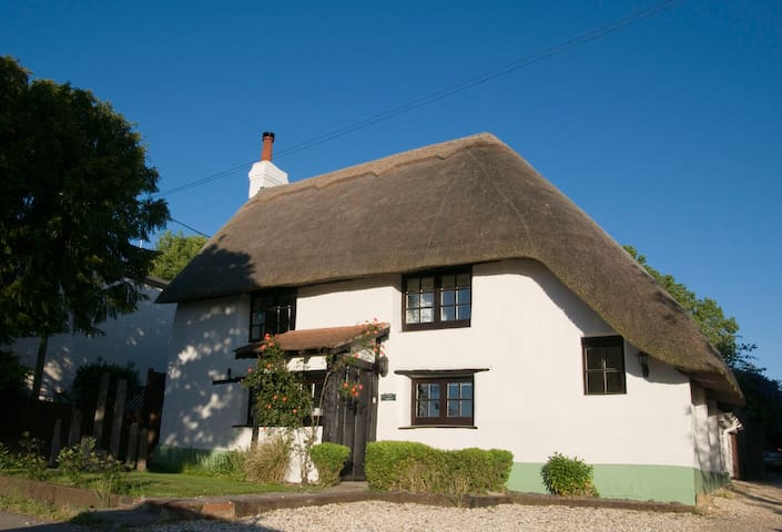 Lovely New Forest Cottage with mature Garden - Hampshire - 獨棟