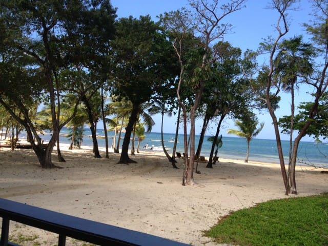 Beachfront home - Palmetto Bay - Talo