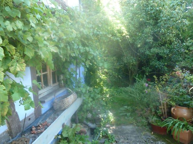 Logement dans une maison alsacienne - Donnenheim