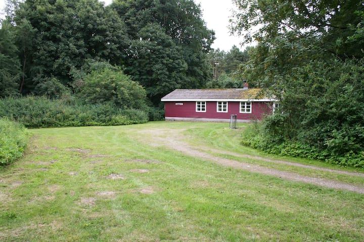 Skovløberhus i  naturskønne omgivelser. - Grenå - Chatka