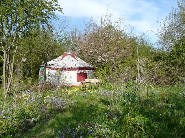 The Yurt at Tithe Farm, North Somercotes. - Church End - Jurta