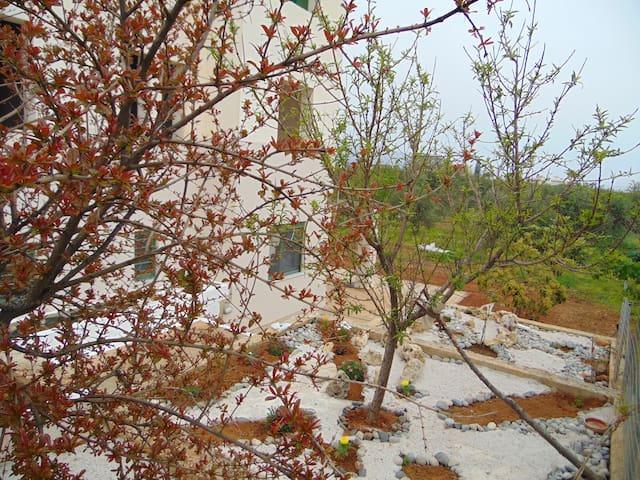 Villa EFTICHIA Natural life Western Side of Crete - Tavronitis - Daire
