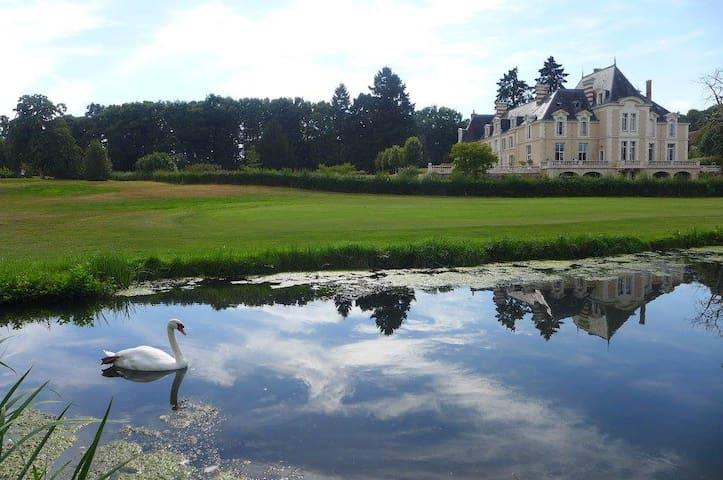 Chateau d'Ardree Suite IV for 2 pax B&B Near Tours - Saint-Antoine-du-Rocher