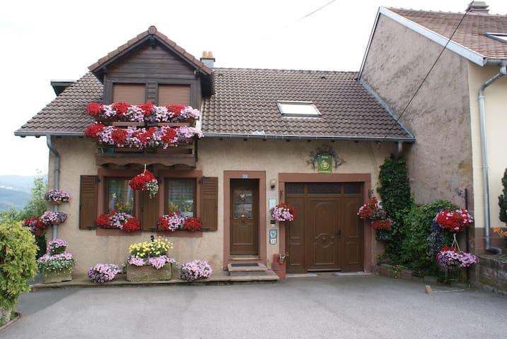 le gite fleuri - Haselbourg - Lägenhet