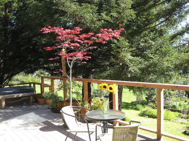 Sonoma Coastal Getaway - Occidental - Hus