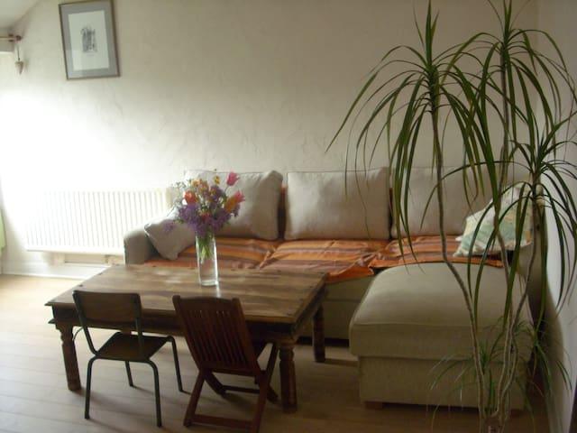 Appart chaleureux de 60m2 tout près de Nantes - Rezé - Apartamento