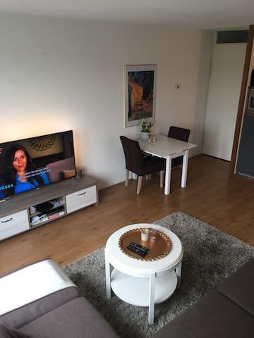 Cozy apartment near the city with private parking - Utrecht - Apartamento